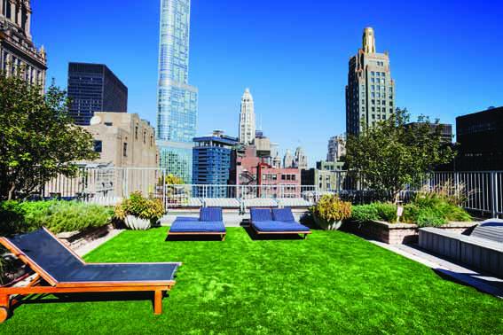 Rooftop Garden in The Loop, Downtown Chicago
